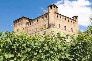 vinhedo na região de Piemonte, Itália, com grinzane cavour foto