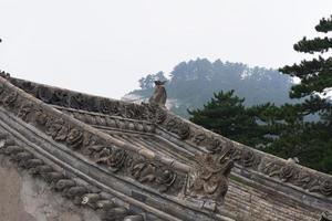 telhado com escultura em pedra na montanha taoísta sagrada da montanha huashan china foto