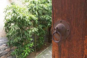 porta de madeira e jardim no museu de artes folclóricas de tianshui, china foto