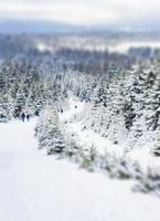 nevou e movimento borrado paisagem brocken montanha harz alemanha. foto