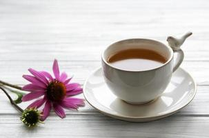 chá de equinácea com flores frescas. foto