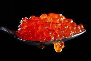 uma colher cheia de caviar vermelho sobre um fundo preto. foto