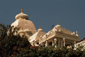 templo de mármore atrás da folhagem foto