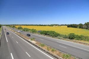 campo de girassóis próximo à rodovia em arles, sul da frança foto