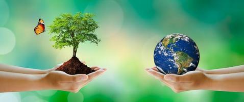 ambiente mundial e conceito verde. elementos fornecidos pela nasa. foto