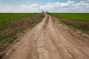 estrada de terra suja foto