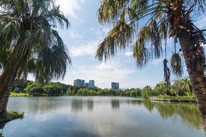 parque público na cidade grande. conceito de lugar e ar livre foto