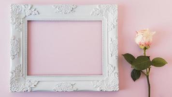 moldura branca vintage com uma rosa fresca foto