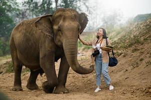 turistas femininas alimentam os elefantes de uma maneira divertida. foto