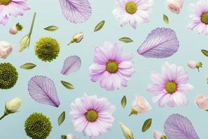 margaridas e folhas da primavera foto