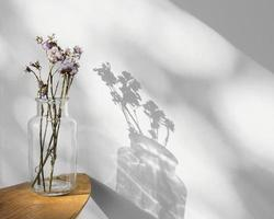 conceito mínimo abstrato de flores e sombras foto