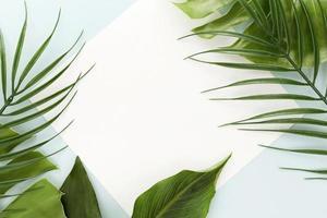 moldura de folhas foto