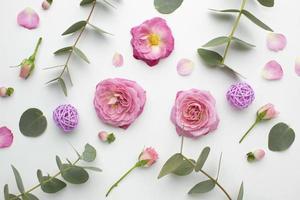 rosas e pétalas foto