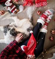 vista superior de uma mulher com meias engraçadas comemorando o natal com seu cachorro foto