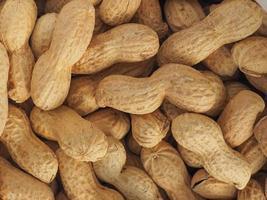 amendoim, útil como pano de fundo foto