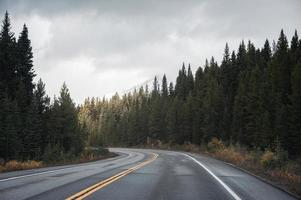 viagem em estrada rodoviária com luz do sol em floresta de pinheiros nublado no parque nacional de banff foto