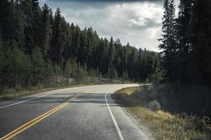 viagem de estrada de asfalto curvada em uma floresta de pinheiros no parque nacional de banff foto