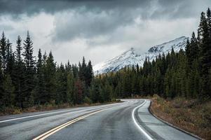 rodovia de asfalto na floresta de outono em dia sombrio no parque nacional de banff foto