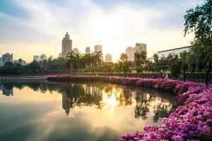 flores na cidade foto