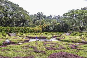 lindo jardim submerso nos jardins botânicos de perdana, kuala lumpur, malásia. foto