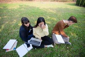 grupo de estudantes universitários asiáticos sentados na grama verde trabalhando e lendo juntos em um parque foto