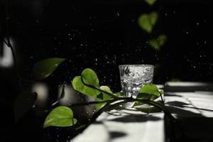 água com gás sendo derramada em um copo contra um fundo preto. um copo de água em um fundo escuro entre as folhas verdes. conceito ecológico foto