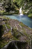 cachoeira em uma floresta selvagem foto