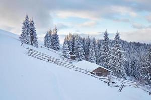 fantástica paisagem de inverno, os degraus que levam à cabana. evento mágico em dia gelado. em antecipação ao feriado. cenas dramáticas. cárpato, ucrânia, europa foto