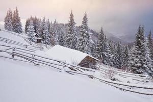 cabana de madeira aconchegante no alto das montanhas nevadas. grandes pinheiros no fundo. pastor kolyba abandonado. dia nublado. montanhas dos cárpatos, ucrânia, europa foto