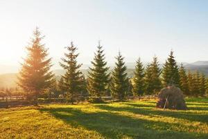 bela paisagem do nascer do sol de outono nas montanhas dos Cárpatos, viagem pela Europa, oeste da Ucrânia, parque nacional dos Cárpatos, mundo maravilhoso, papel de parede de fundo de paisagem foto