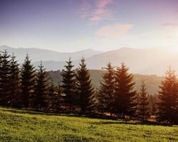 a paisagem montanhosa de outono com floresta colorida. cena dramática da manhã. folhas de outono vermelhas e amarelas. local lugar cárpatos, ucrânia, europa foto