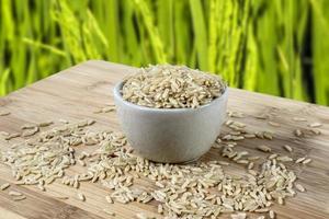 sementes de arroz integral em uma tigela de vidro isolada na mesa de madeira no Brasil, com fundo de campo de arroz desfocado foto