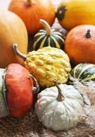 composição de outono com abóboras sortidas foto