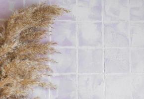 flatlay de grama de pampas em fundo de ladrilho foto