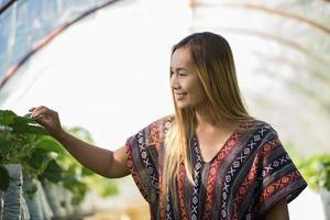bela agricultora verificando a fazenda de morangos foto