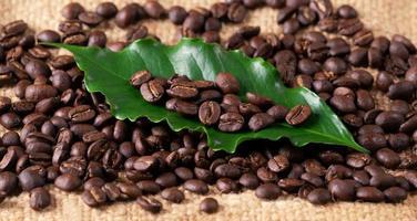 grão de café torrado em saco de linin foto