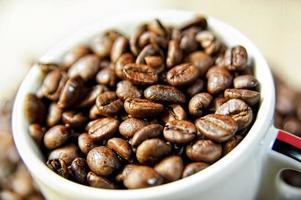 xícara de café e grãos de café torrados. foto