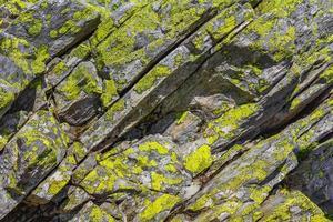 textura de rocha de pedra com musgo verde amarelo e líquen noruega foto