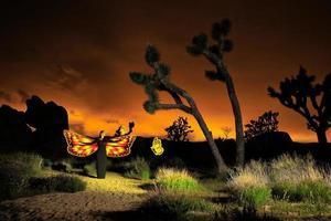 pessoa luz pintada no deserto sob o céu noturno foto