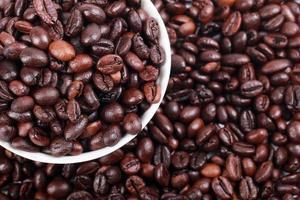 uma coleção de grãos de café torrados foto