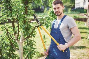 estacas de jardineiro de plantas de jardim na primavera foto