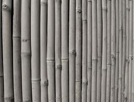 fundo de cerca de bambu tailandês bonito foto