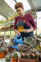 jardineira trabalhando em sua estufa foto