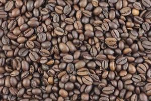 textura de grãos de café foto