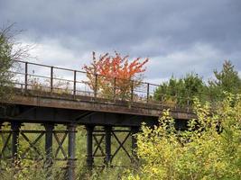 cores do outono e uma linha férrea desativada na reserva natural de fairburn ings, west yorkshire, inglaterra foto