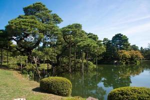 lindo jardim japonês em kanazawa. árvores perto do lago. dia ensolarado. Japão, foto