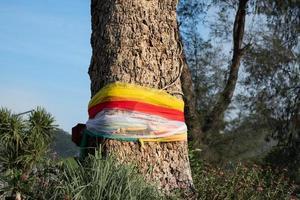 um pano colorido enrolado em uma grande árvore com fiéis no parque, crença na religião para saúde e sorte, o verdadeiro propósito é que era uma estratégia para evitar o corte de grandes árvores conceito foto