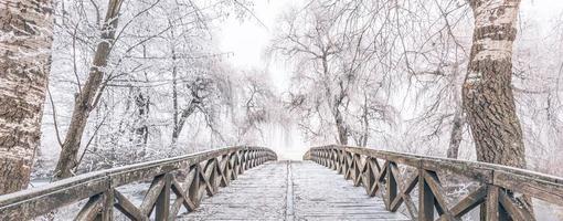 cena de inverno no jardim botânico, mostrando uma ponte sobre água congelada e árvores cobertas de neve fresca foto
