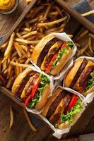 cheeseburgers duplos e batatas fritas