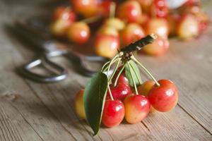 cerejas vermelhas frescas da colheita recente foto